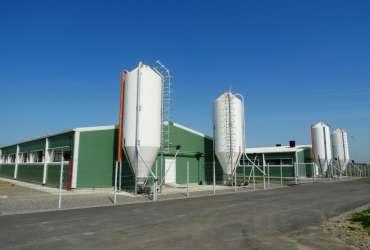 PRO-series-landbouwgebouw-varkensstal-Frisomat-staalbouw