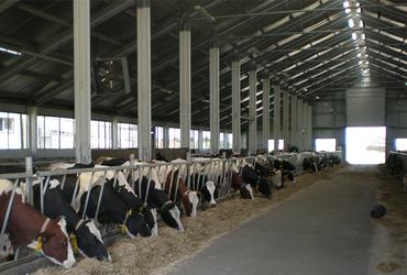 PRO-series_veestallen_Frisomat_landbouwgebouw
