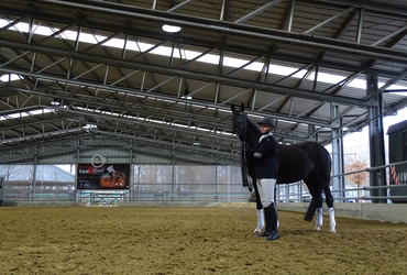 Maneges_Indoor paardenpiste_PRO-series